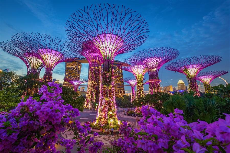 چگونه سنگاپور، سنگاپور شد؟ درس هایی از خصوصی سازی  یک غول