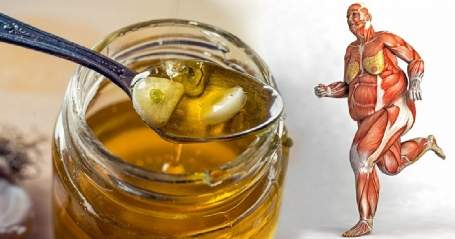 اگر هر روز عسل بخورید چه اتفاقی در بدن شما روی خواهد داد؟