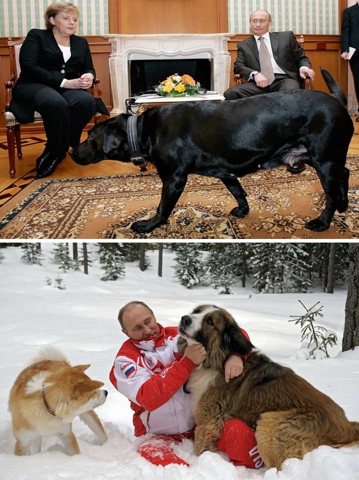 حیوانات خانگی رهبران سیاسی دنیا