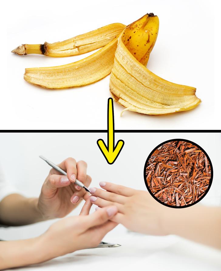 باکاربردهای پوست موز آشنا شوید