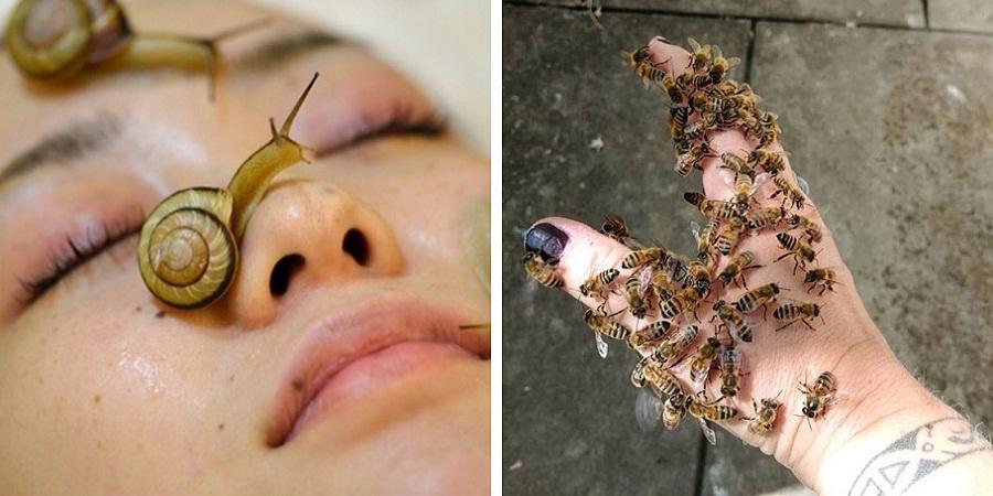 از زنبور درمانی تا حمام آبجو؛ عجیبترین روشهای رایج در دنیا که کاربرد درمانی و زیبایی دارند