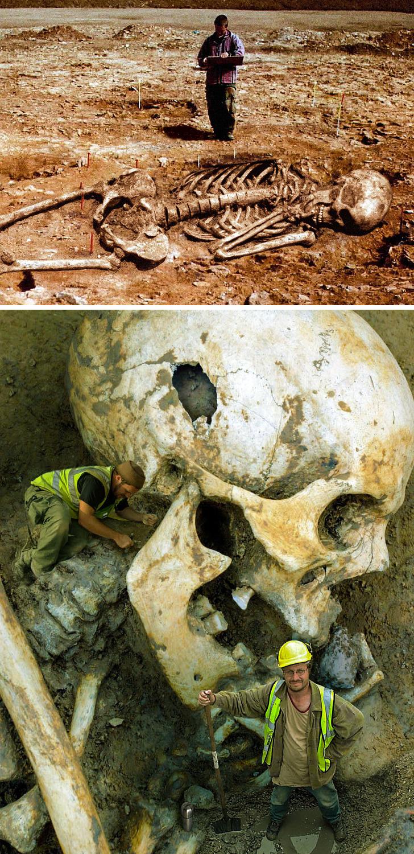 10 تصویر ترسناک و تاریخی
