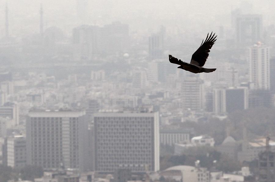 آلودگی هوا هر سال قربانی میگیرد