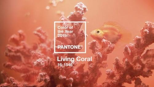 رنگ مرجان زنده 2019 پنتون