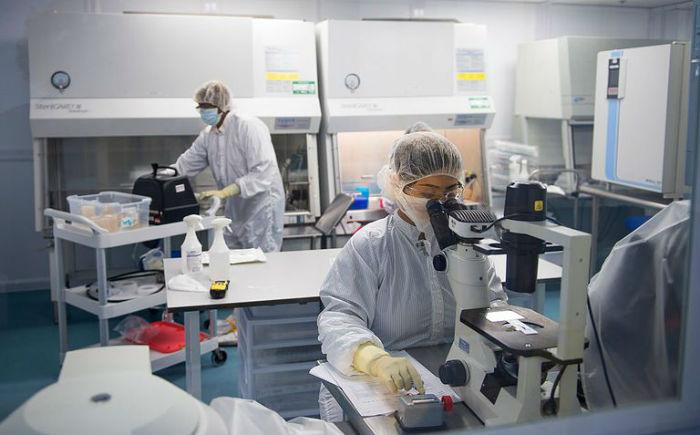 مهندسی ژنتیک