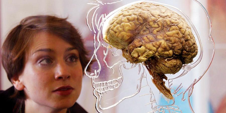 باورهای غلط درباره مغز انسان