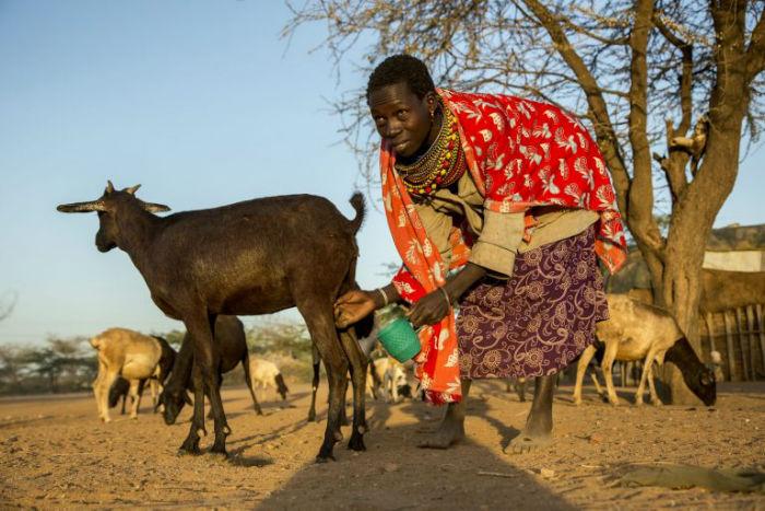 کودک همسری در آفریقا