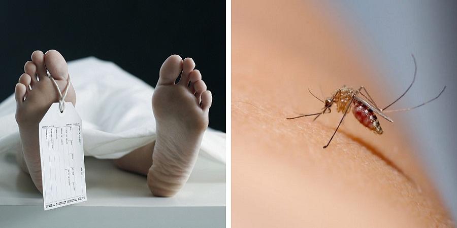 بیماری های مرگباری که یک روز نشده جانتان را می گیرند