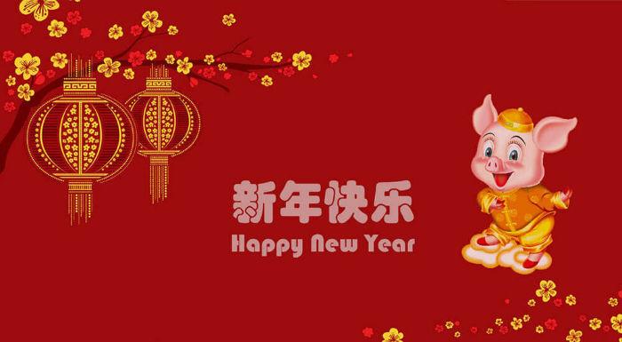 طالع بینی بر اساس سال نو چینی، آیا سال خوک برای شما خوش یمن خواهد بود؟