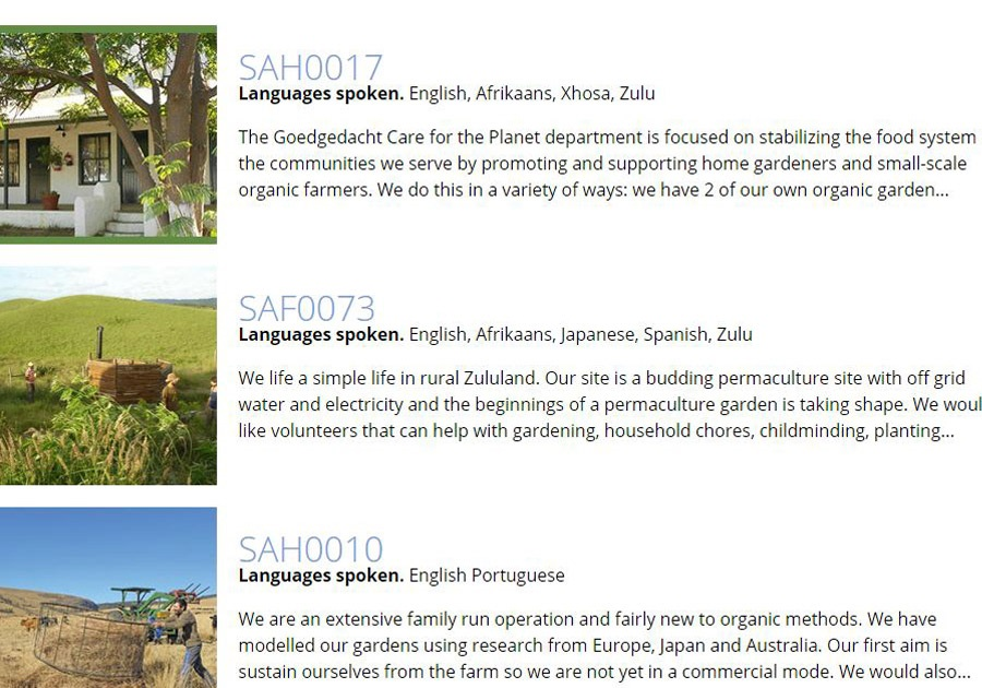 معرفی وبسایتهای مناسب برای سفرهای داوطلبانه
