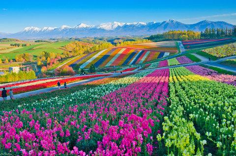 جاذبههای گردشگری رنگارنگ