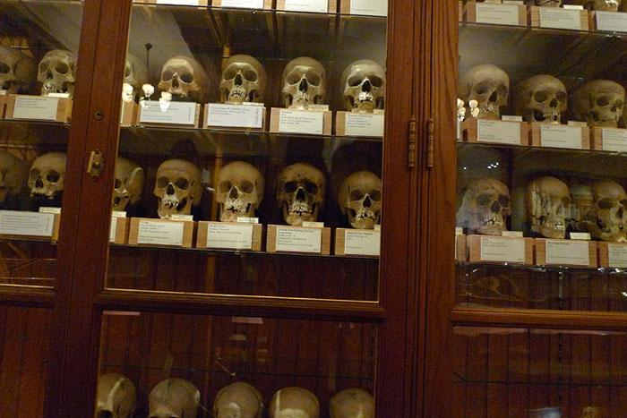 کتابهایی که با پوست انسان جلد شدهاند / موزه ماتر / چندش آورترین موزه های جهان