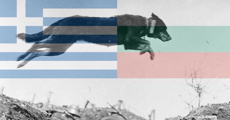 3 مورد از احمقانه ترین جنگ های تاریخ؛ از نبرد بر سر سطل آب تا سگ ولگرد