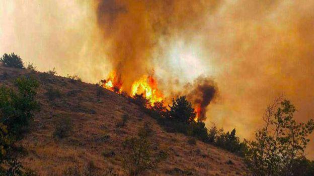 عمدی بودن آتشسوزی ارسباران1