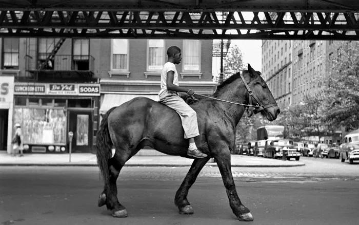 مشهورترین عکاسان خیابانی جهان