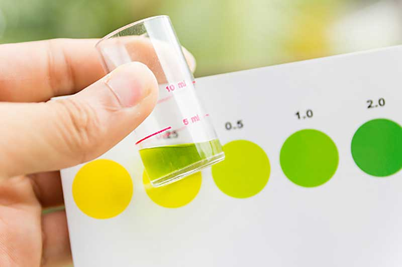 رنگ ادرار چه رازی در مورد سلامتی شما میگوید