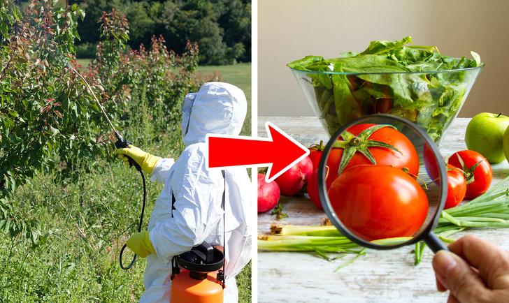مضرات مصرف گوجهفرنگی