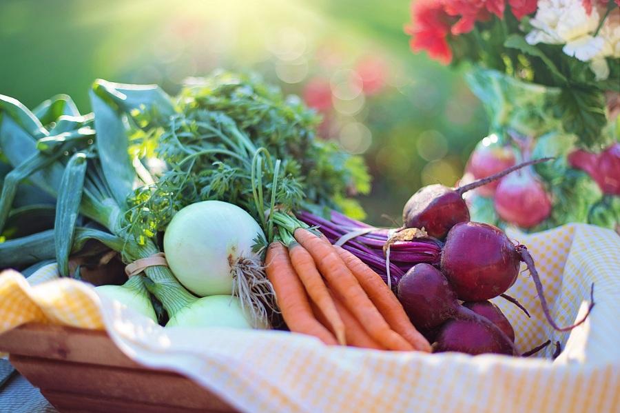 درمان بیماری با مواد غذایی