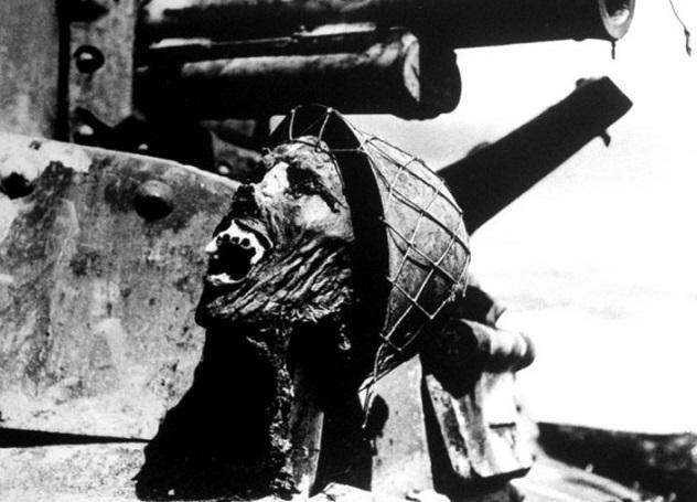 در ادامه این مطلب قصد داریم شما را با 10 عکس هولناک و شوکه کننده در مورد جنگ و داستان های تراژیکی که پشت هر یک قرار دارد آشنا کنیم.