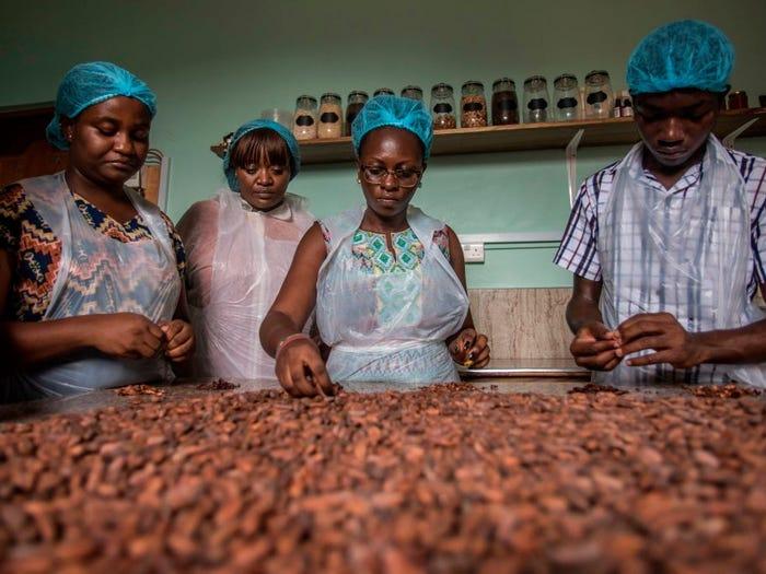 حقایقی درباره صنعت شکلات