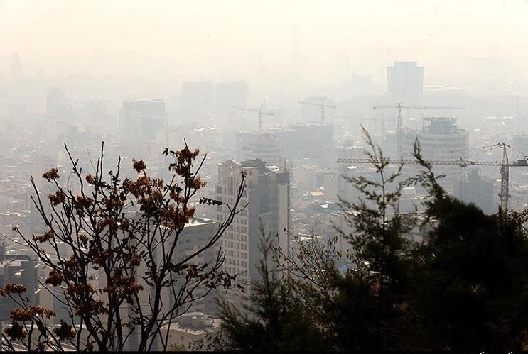 تراژدی آلودگی هوا: مردگانی که در بهشت زهرا به صف شدند