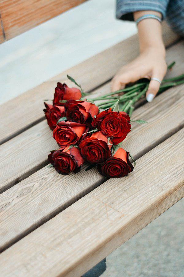چه گلی برای هدیه تولد لازم است