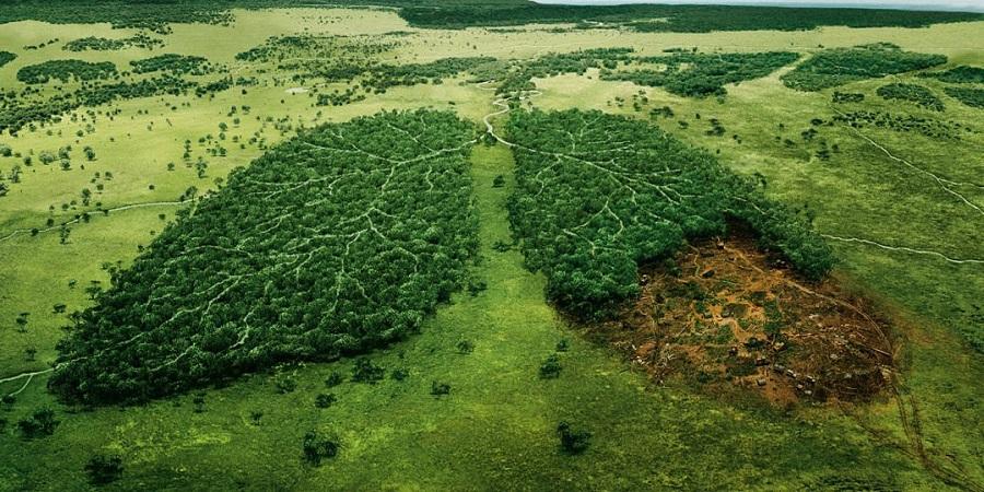 از اکسیژن تا خاک و فلزات؛ اگر همه منابع طبیعی زمین تمام شوند چه اتفاقی می افتد؟
