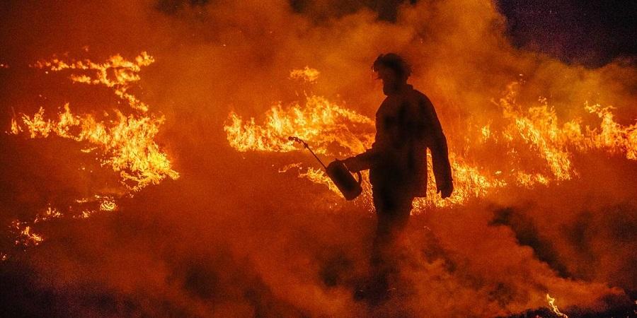 آتش سوزی های استرالیا چه تأثیری بر دنیا دارد؟ زمین در آستانه نابودی