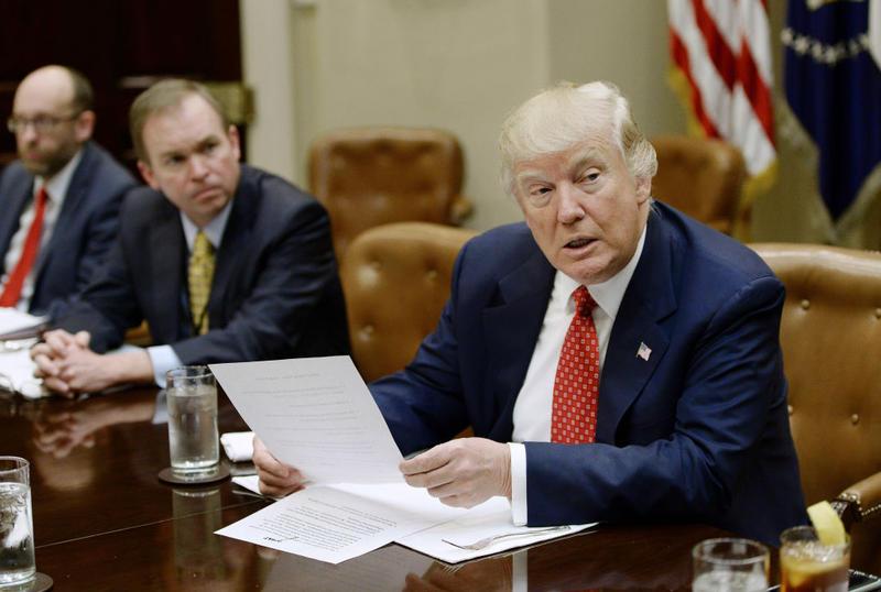 دونالد ترامپ، رییس جمهور ایالات متحده روز یکشنبه از بودجه پیشنهادی خود رونمایی کرد، بودجه ای که در آن کمک های خارجی و هزینه های درمان با کاهش روبرو شده است.