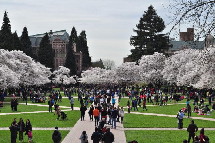 ۱۰ واقعیت ناخوشایند در مورد دانشگاه ها و دانشجو بودن در ایالات متحده [قسمت دوم]
