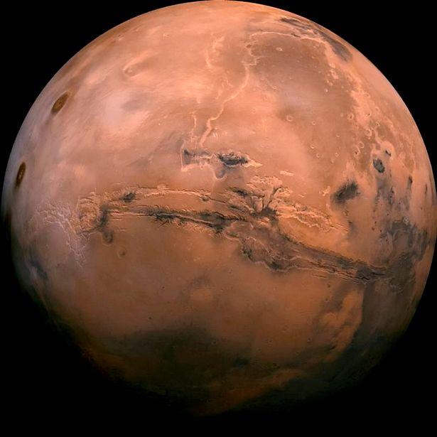 زندگی در مریخ