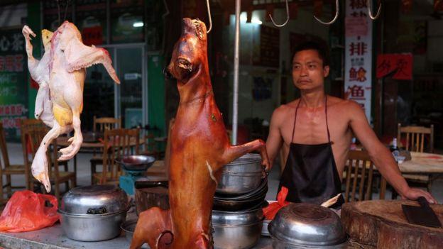 فستیوال گوشت سگ چین