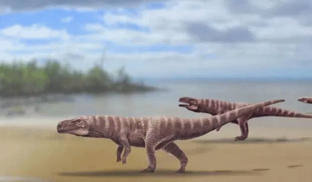 کروکودیل دایناسور
