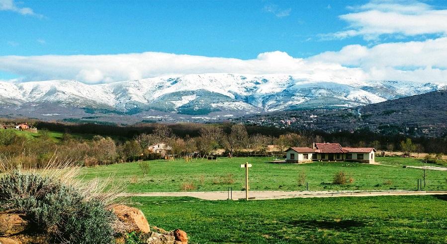 روستا زرگر