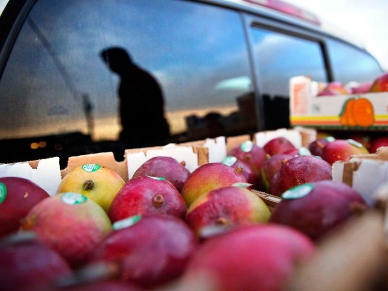 1 cb9f1d8bd1e2748dd55a863 روزیاتو: میوه هایی که نمی دانستید پوست شان هم خوردنی است اخبار IT