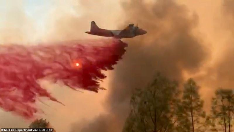 آتش سوزی در کالیفرنیا؛ ۲۵۰ هزار نفر از خانه هایشان گریخته اند + تصاویر