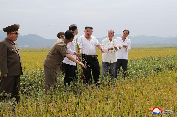 5 کارمند وزارت اقتصاد کره شمالی به جرم انتقاد از سیاستهای کیم جونگ اون اعدام شدند