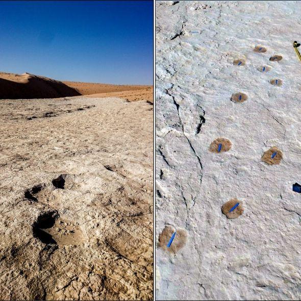 2 history 2673197 روزیاتو: کشف ردپاهای انسانی در عربستان که دریچه تازه ای به گذشته بشر گشود اخبار IT