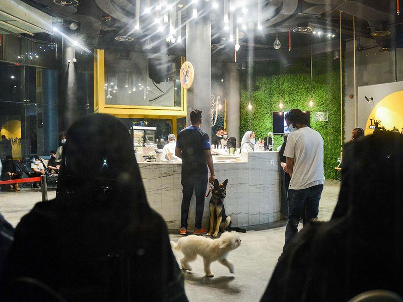 The Barking Lot؛ افتتاح اولین کافی شاپ مجاز به ورود سگ ها در عربستان سعودی