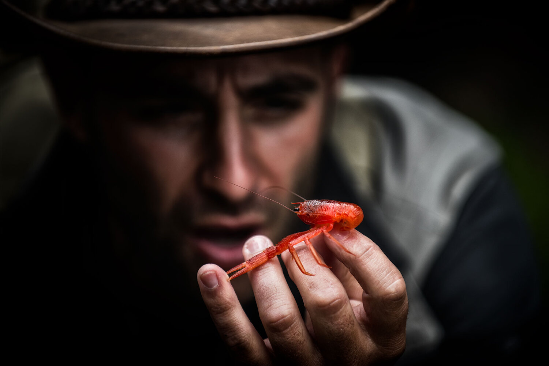 کایوتی پترسون تاکنون ده ها ویدیو اینچنینی ساخته که در آن ها خود را در معرض نیش برخی از خطرناک ترین گونه های حیات وحش قرار می دهد