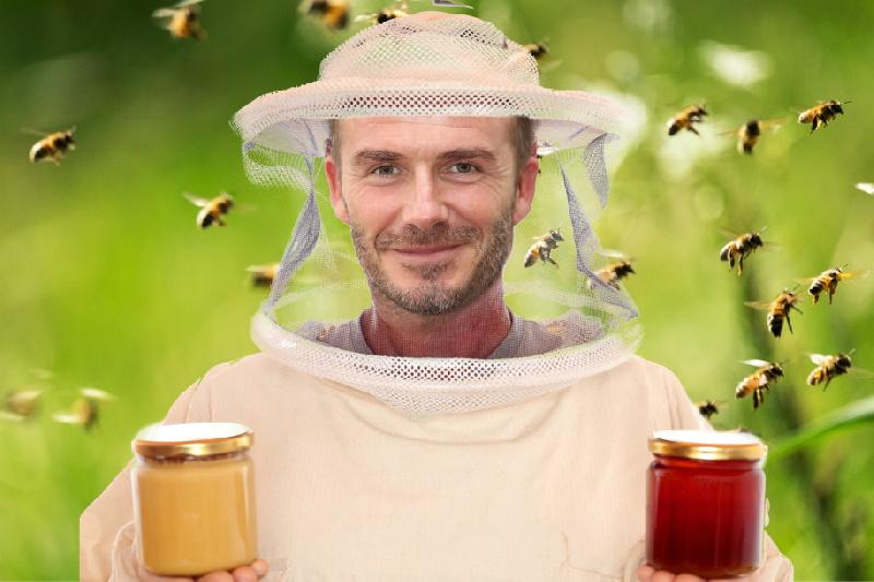 زنبورداری و تولید عسل ؛ کسب و کار جدید دیوید بکهام بدنبال ابتلا به کرونا