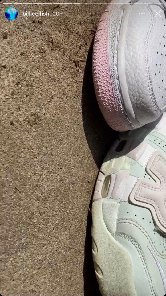 یک جفت کفش ورزشی بیلی آیلیش به شکل باورنکردنی باعث اختلاف در میان کاربران اینترنت شده است.