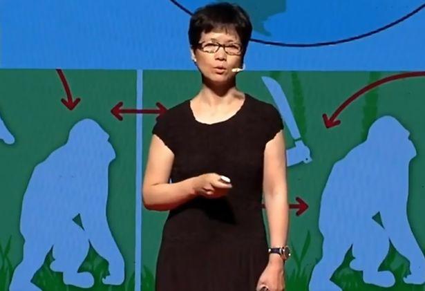 شی ژنگ لی ویروس شناس مشهور چینی در یک کنفرانس علمی بود که از طریق تلفن به او خبر داده شد مواردی از ابتلا به کرونا گزارش شده است.