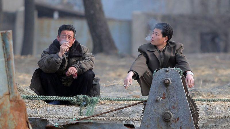 یکی از گرانقیمت ترین برندهای سیگار جهان به نام Davidoff که در سوییس تولید می شود از سیگارهای مورد علاقه دیکتاتور جوان کره شمالی است.