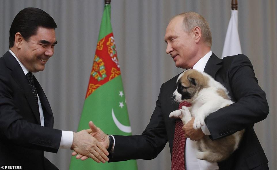 رییس جمهور ترکمنستان از یک مجسمه طلایی 50 فوتی (15.24) متری از نژاد سگ محبوبش، آلابای، در پایتخت این کشور رونمایی کرده است.