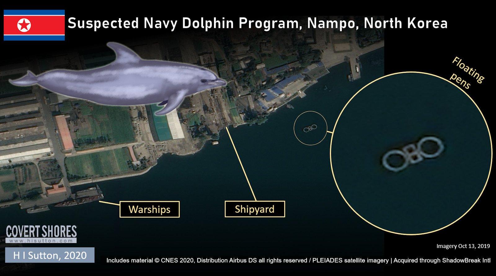 بر اساس اسناد تازه و تصاویر ماهواره ای، کره شمالی در حال آموزش دلفین ها برای اهداف نظامی مانند مین روبی و حمله به غواصان دشمن است.
