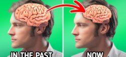 ۵ نشانه ای که ثابت می کند بدن انسان به سرعت در حال تکامل است