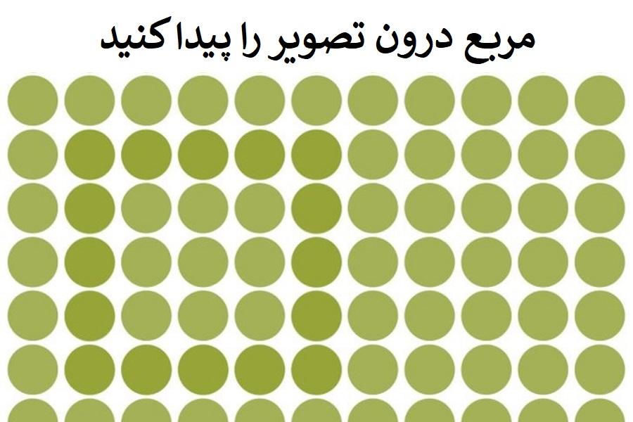 چند معمای تصویری که قدرت بینایی تان را می سنجند