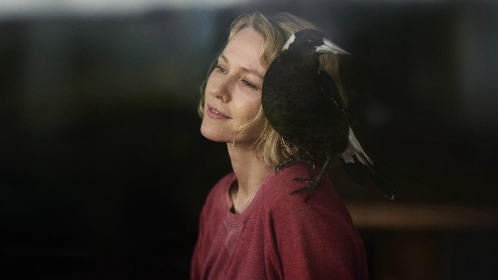 ۱۰ فیلم اکران نشدهای که می توانند فهرست شانس های اسکار ۲۰۲۱ را زیر و رو کنند