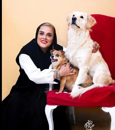 سگ ها، دوستان و آثار «الهام شعبانی»: دراگ تستر ملکه گدایان